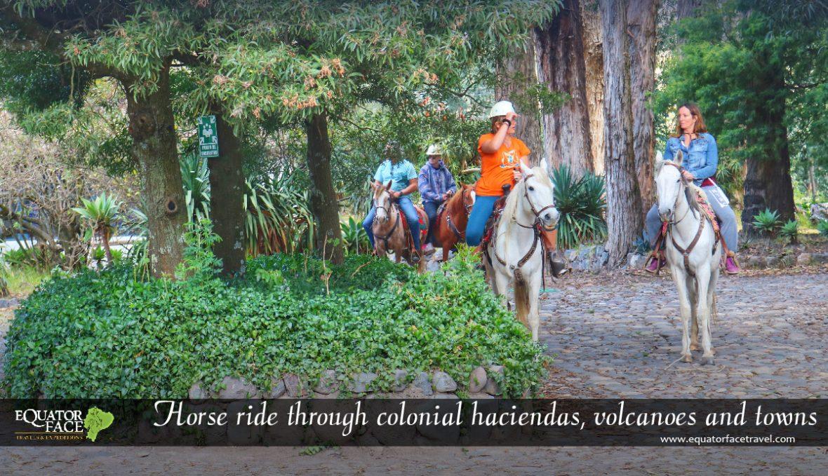CABALGATA EN HACIENDAS DEL ECUADOR