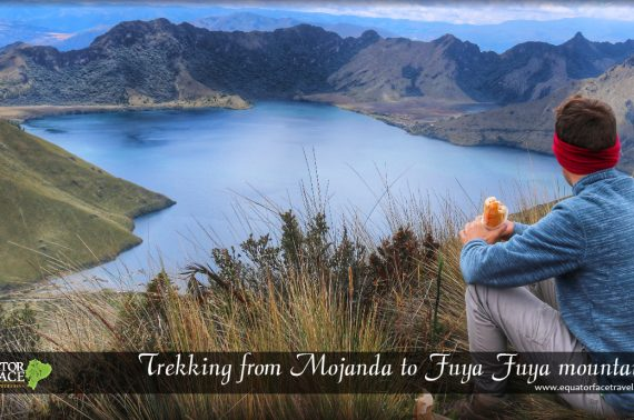 HIKING MOJANDA – FUYA FUYA MOUNTAIN