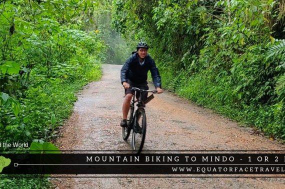 Excursion 2 Days Mindo, adventure and nature Nono – Mindo
