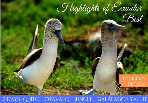 HIGHLIGHTS DE ECUADORTHE BEST OF ECUADOR
