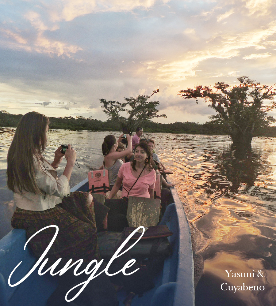 AMAZONIA – JUNGLE TRIPS