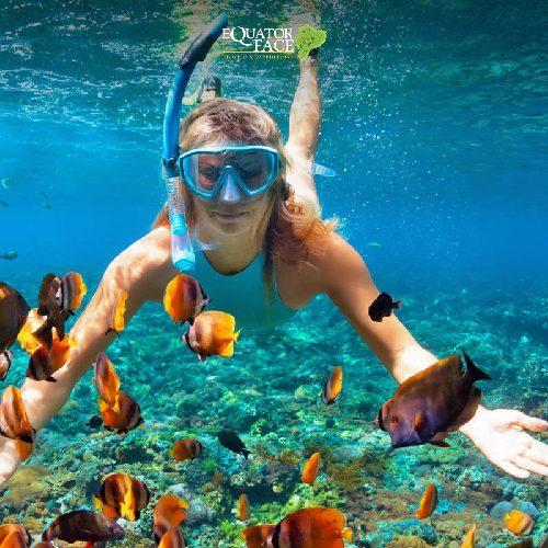 snorkeli9ng galapagos