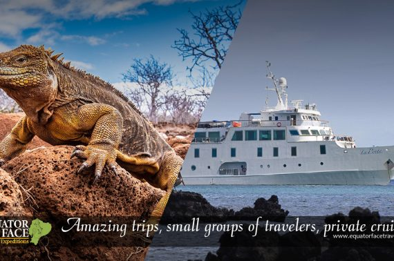 Safe vacations in Ecuador and Galapagos, Cruises